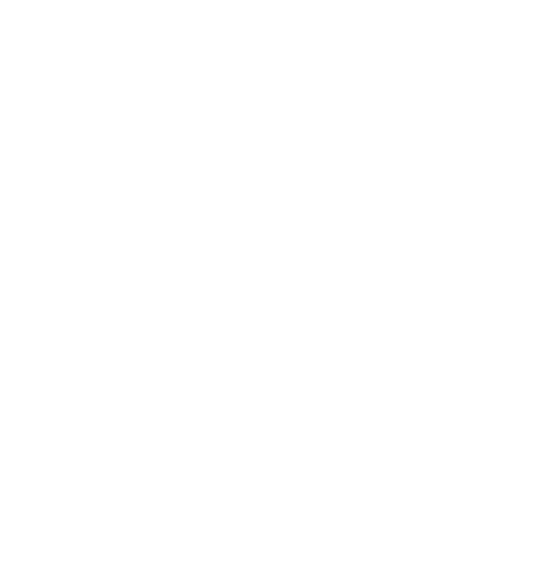The Social Project Inc.